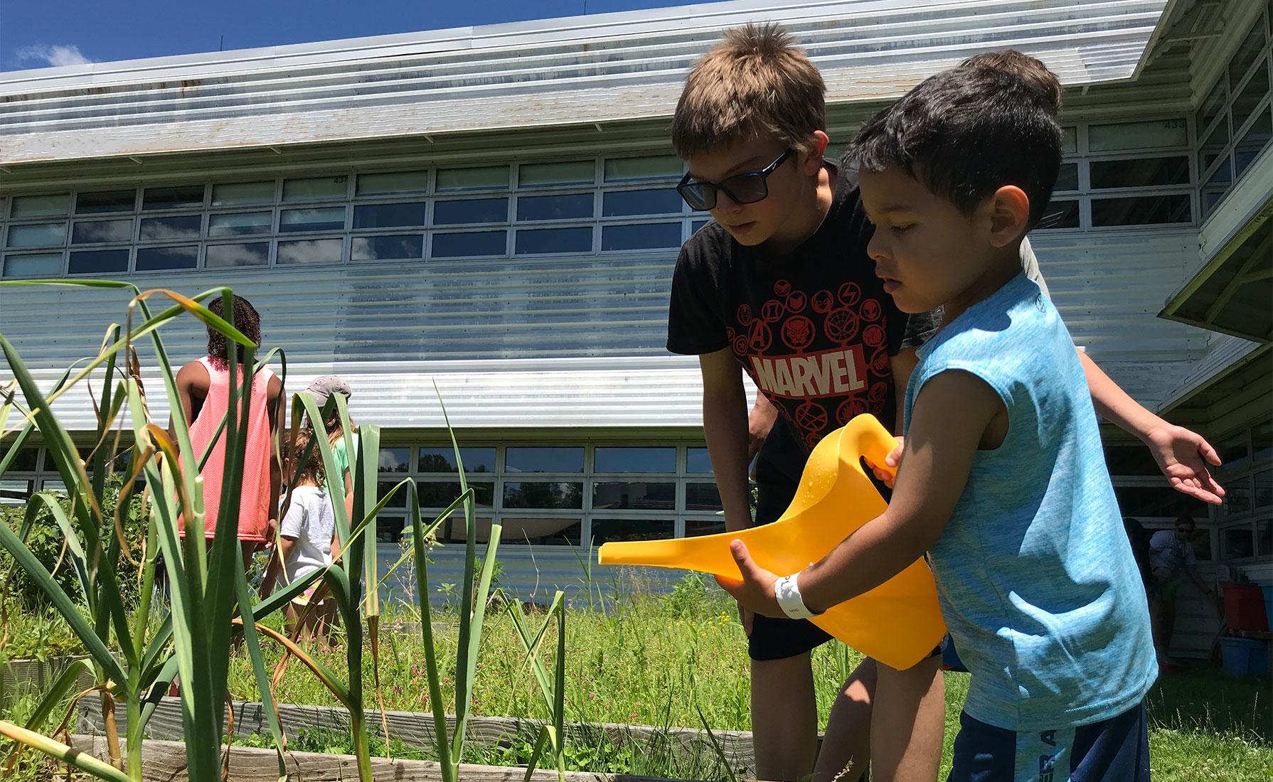 A boy watering a garden